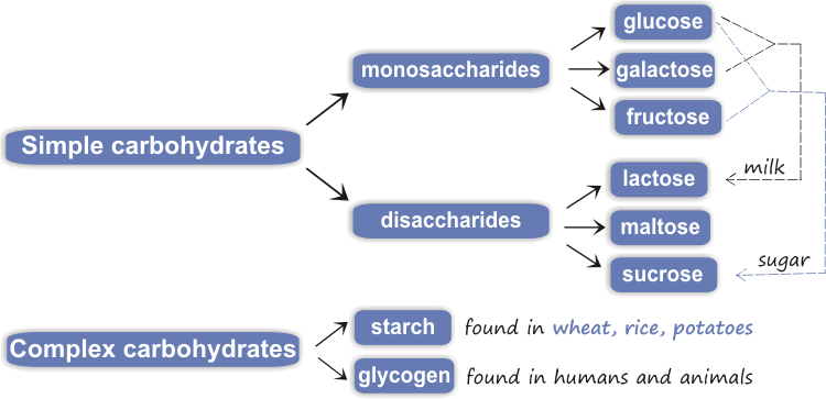 carbohydrates in honey