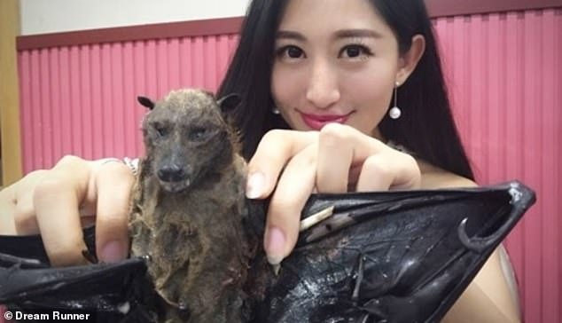 Wang Mengyun is seen displaying a bat which she is about to eat in an old episode of her travel programme. The video, filmed in 2016, has drawn widespread criticism to her amid an outbreak of the novel coronavirus which has killed at least 106 and infected some 4,590