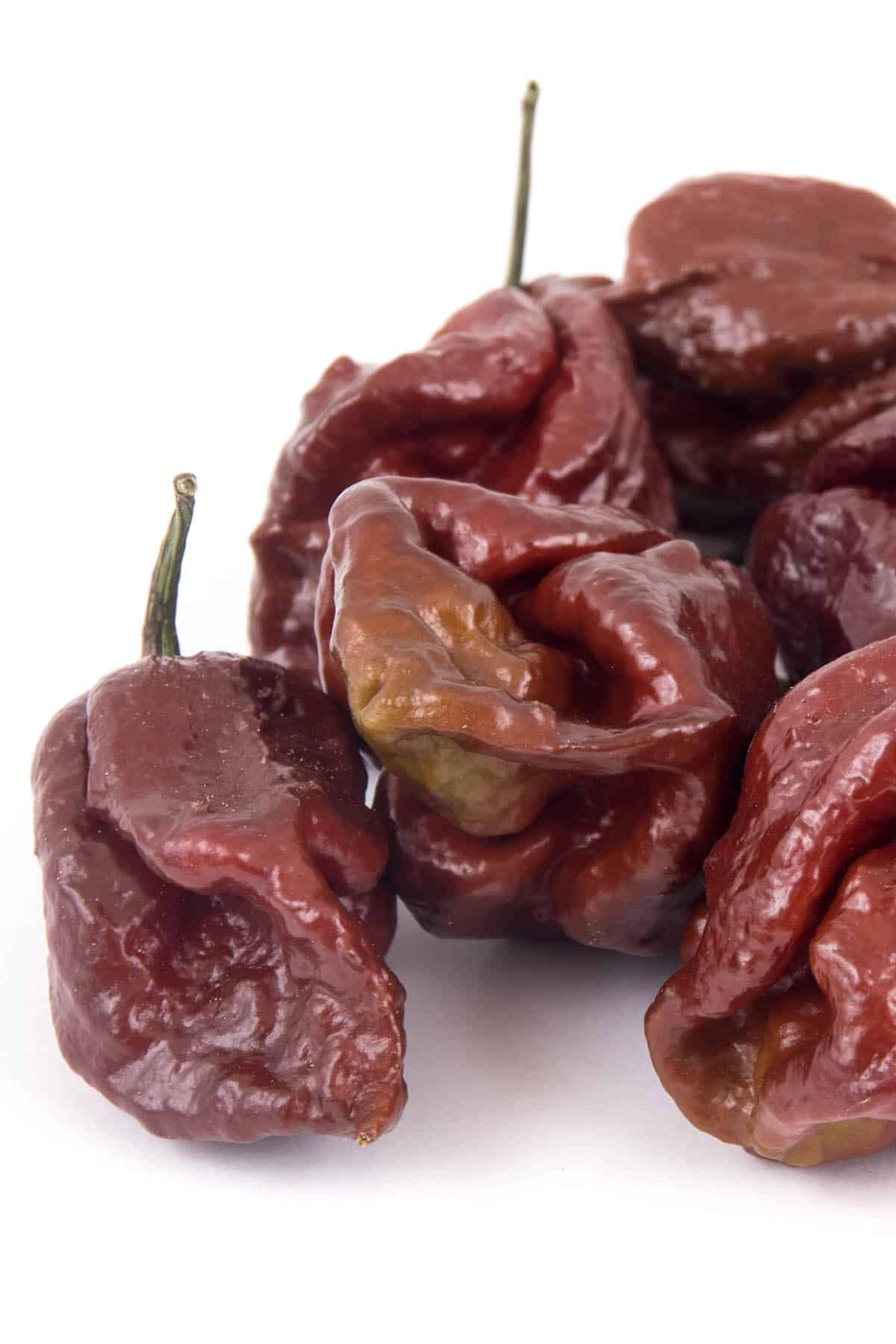 Chocolate 7 Pot Peppers