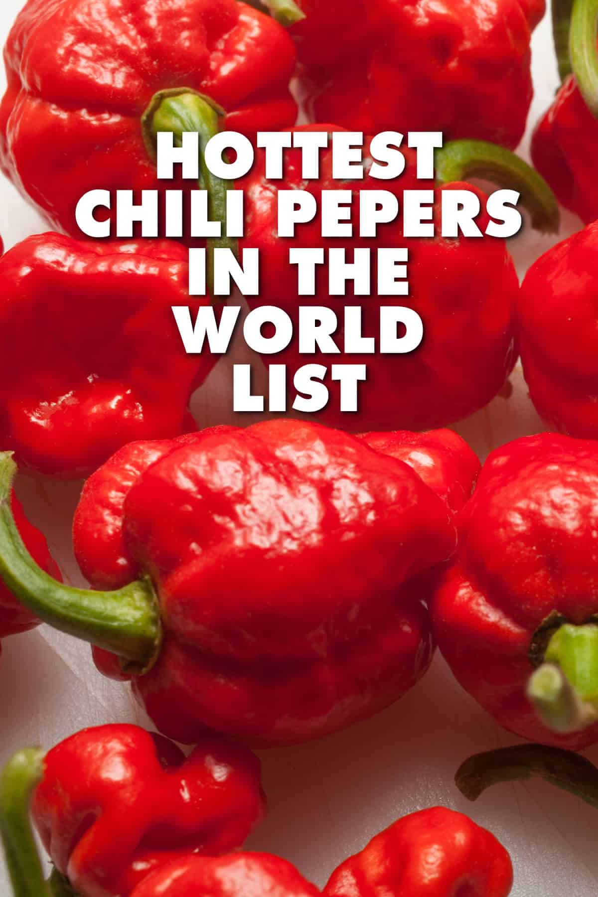 What are the Hottest Peppers in the World? 2019 List
