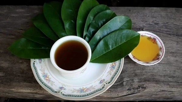 soursop leaves tea and honey
