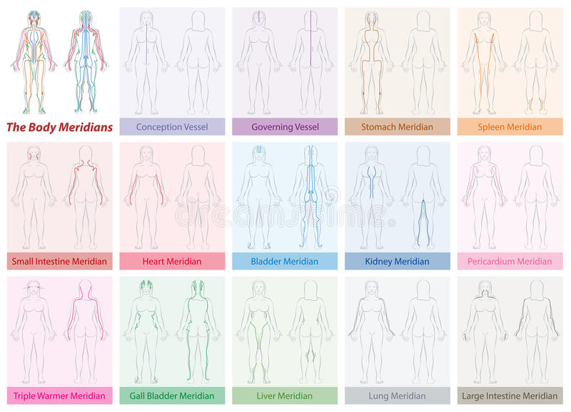 Body Meridians Chart Woman Colors stock illustration