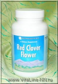 Цветки красного клевера Виталайн, Цветки красного клевера Вита лайн, Цветки красного клевера vitaline